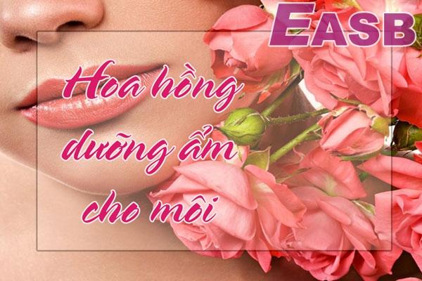 Cấp ẩm cho môi bằng hoa hồng