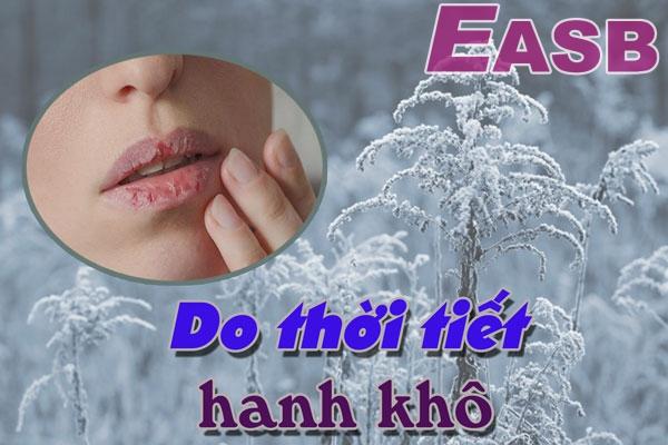 Khô môi, bong tróc, nứt nẻ do thời tiết hanh khô