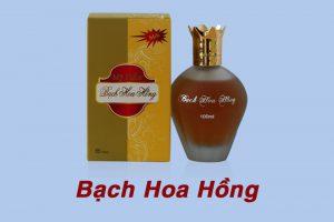 Bạch Hoa Hồng